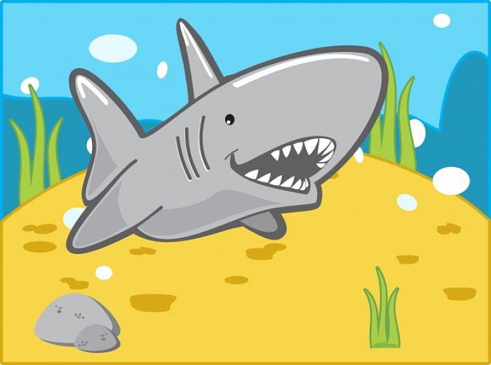 Tiburón Blanco Dibujo Tipos De Tiburones