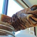 fotos de tiburón cigarro